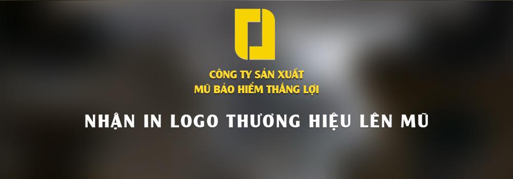 non-mu-bao-hiem-thang-loi-014